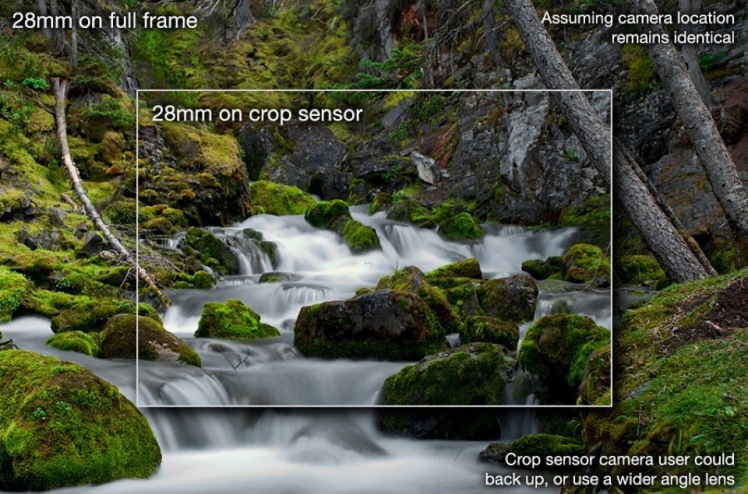 crop-sensor-vs-full-frame-with-labels
